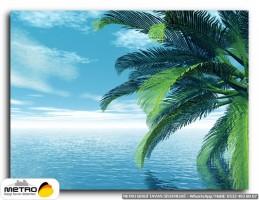 palmiye 00001