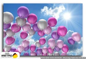 balonlar 00013