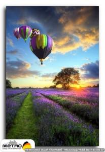 balonlar 00014