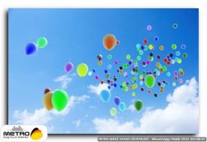 balonlar 00038