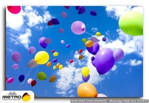 balonlar 00041