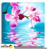 cicek yaprak 00357