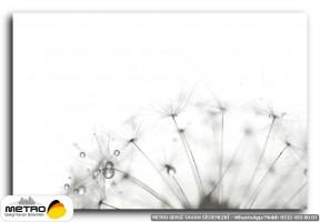 cicek yaprak 00865