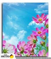 cicek yaprak 01206