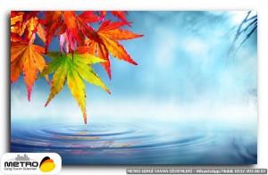 cicek yaprak 01214