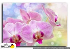cicek yaprak 01227