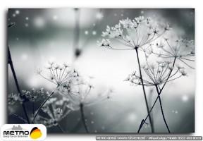 cicek yaprak 01234