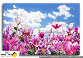 cicek yaprak 01251