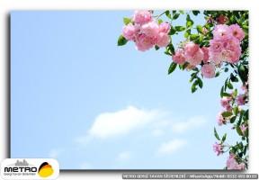 cicek yaprak 01259