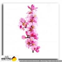 cicek yaprak 01264
