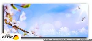 cicek yaprak 01273