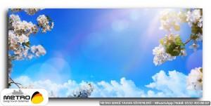 cicek yaprak 01280