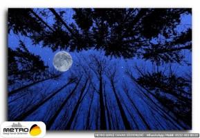 gece uzay 00150