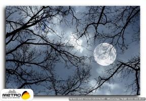 gece uzay 00159