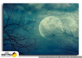 gece uzay 00285