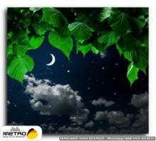 gece uzay 00305