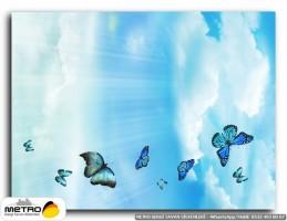 kelebekler 00001