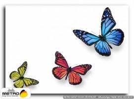 kelebekler 00014