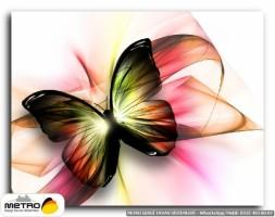 kelebekler 00018