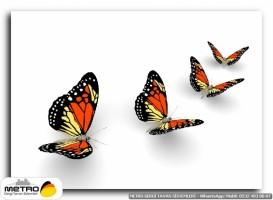 kelebekler 00040