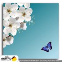 kelebekler 00041