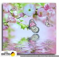 kelebekler 00052