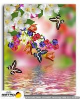 kelebekler 00072