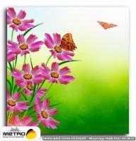 kelebekler 00076