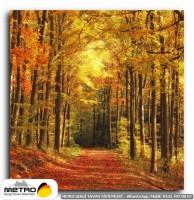 orman agac yol 00038