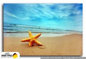 sahil deniz 00034