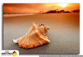 sahil deniz 00038