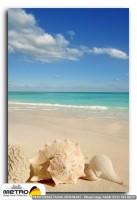 sahil deniz 00069