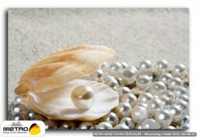 sahil deniz 00111