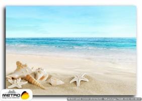 sahil deniz 00153