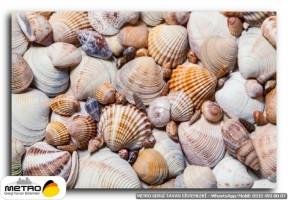 sahil deniz 00154