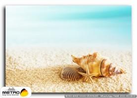 sahil deniz 00175