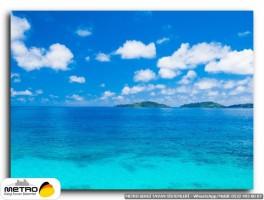 sahil deniz 00205