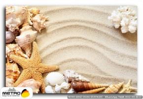 sahil deniz 00206