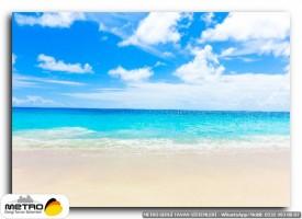 sahil deniz 00208