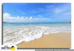 sahil deniz 00209