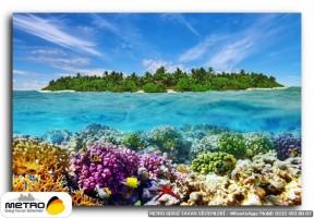sahil deniz 00225
